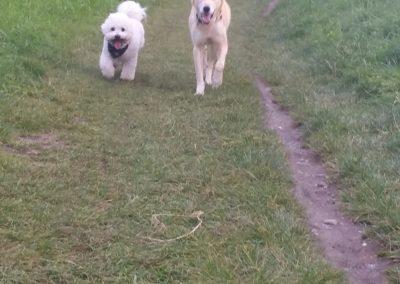 Filou und Annie